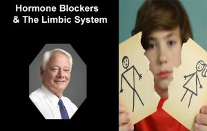 Childhood Gender Dysphoria - Limbic System (Part 1 of 4)