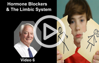 Childhood Gender Dysphoria - Limbic System_Vid_6_Play